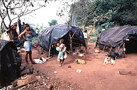 Expelled from their lands, Guarani camp precariously while they wait for their situation to be resolved. Many Cerrado peoples have been forced to live on roadsides while they fight for their lands. Photo by Naqillum (Flickr).