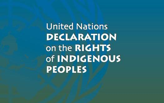 Celebrating 13 Years of the UN Declaration on the Rights of Indigenous Peoples