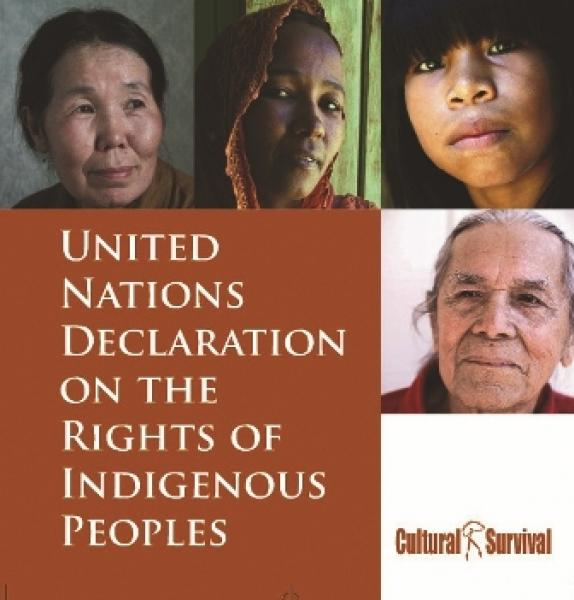 5 Years: UN Declaration On The Rights Of Indigenous