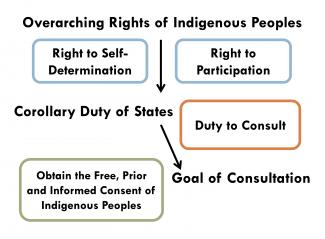 Free Prior And Informed Consent Protecting Indigenous Peoples